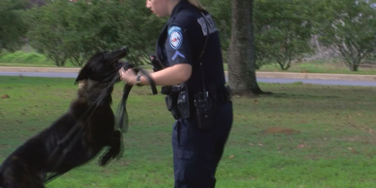 Thomasville PD welcomes first female K-9 officer