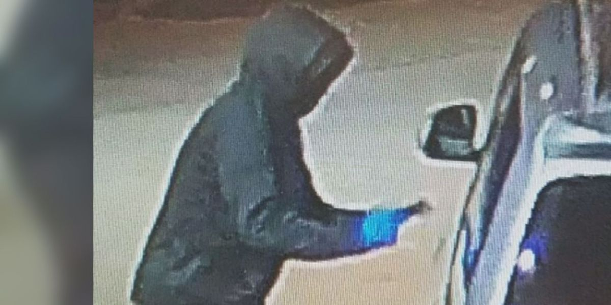 $2K reward offered in capture of shooter in deadly Albany carjacking attempt