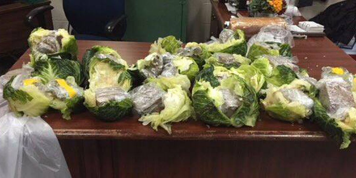Contraband found in cabbage during produce delivery to prison