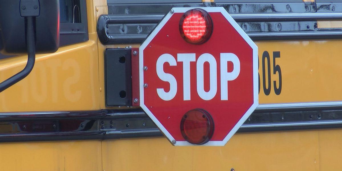GA Senate passes new bill regarding stopped school buses