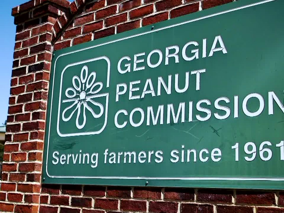 Georgia Peanut Commission to hold 'Peanut Palooza' Saturday