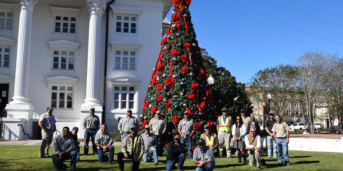 Community Christmas tree now up in Moultrie