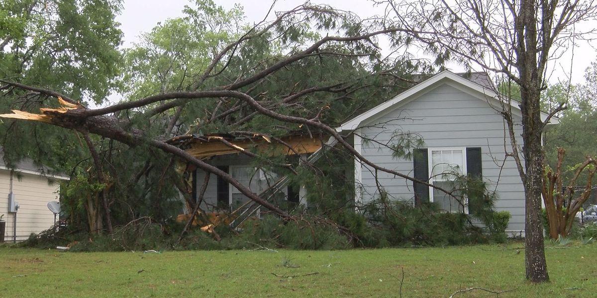 Albany heavily damaged by Monday's weather