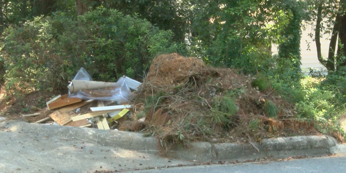 Moultrie Public Works delayed by Hermine