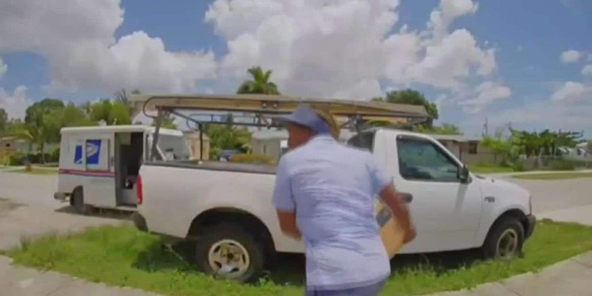 Damaged goods: Mail carrier hurls packages over homeowner's fence