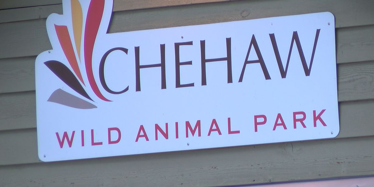 Albany mayor offers up ideas for Chehaw Park and Zoo