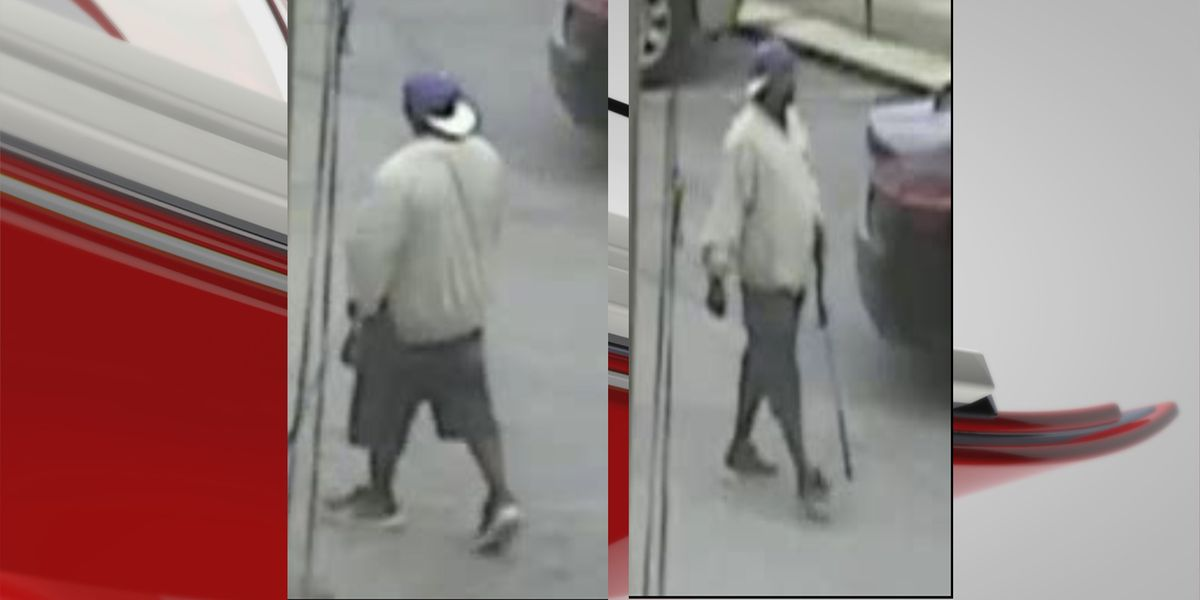 APD looking for suspect in brutal East Albany attack