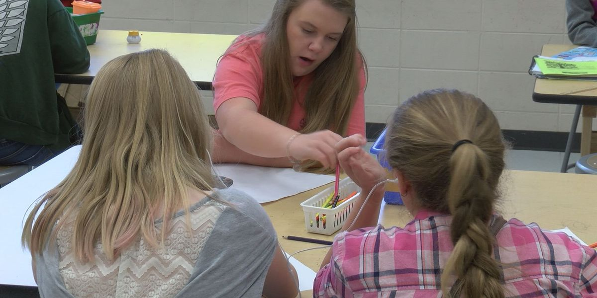 Thomas County art teacher recognized by the state