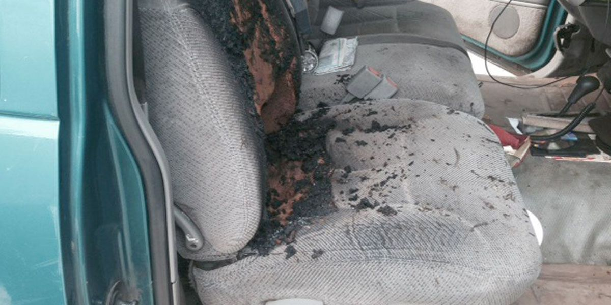 Truck seat scorched by kids and bottle rockets