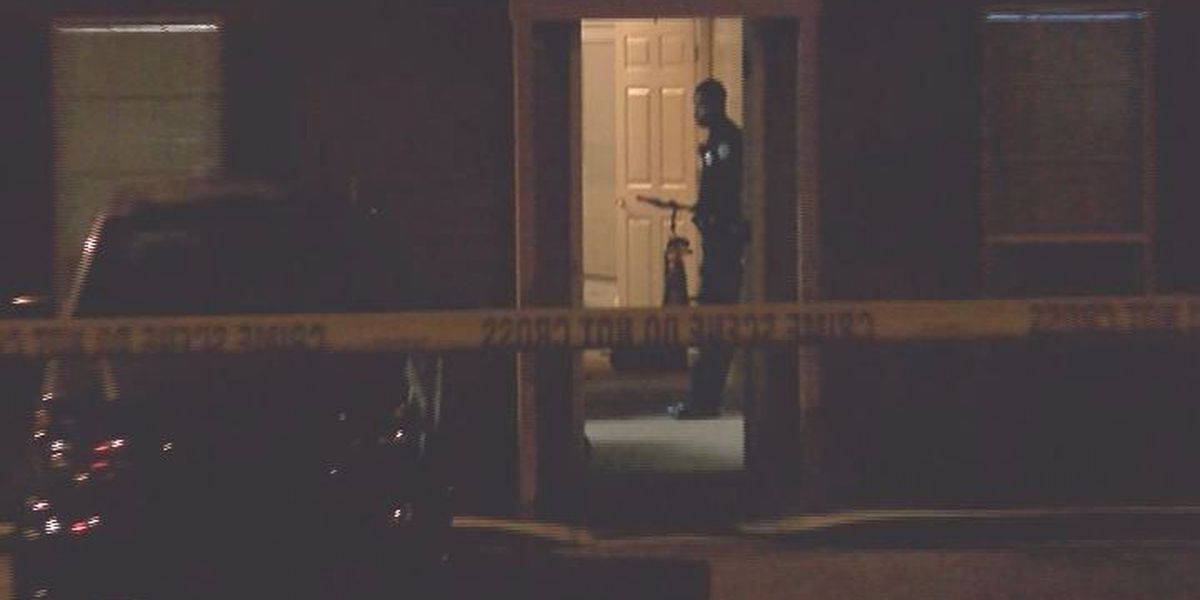 One injured in Albany shooting