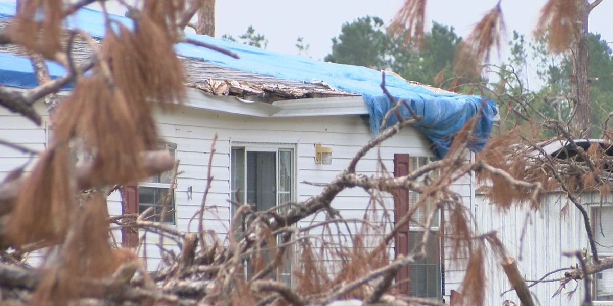 County officials aim to clear private property storm debris