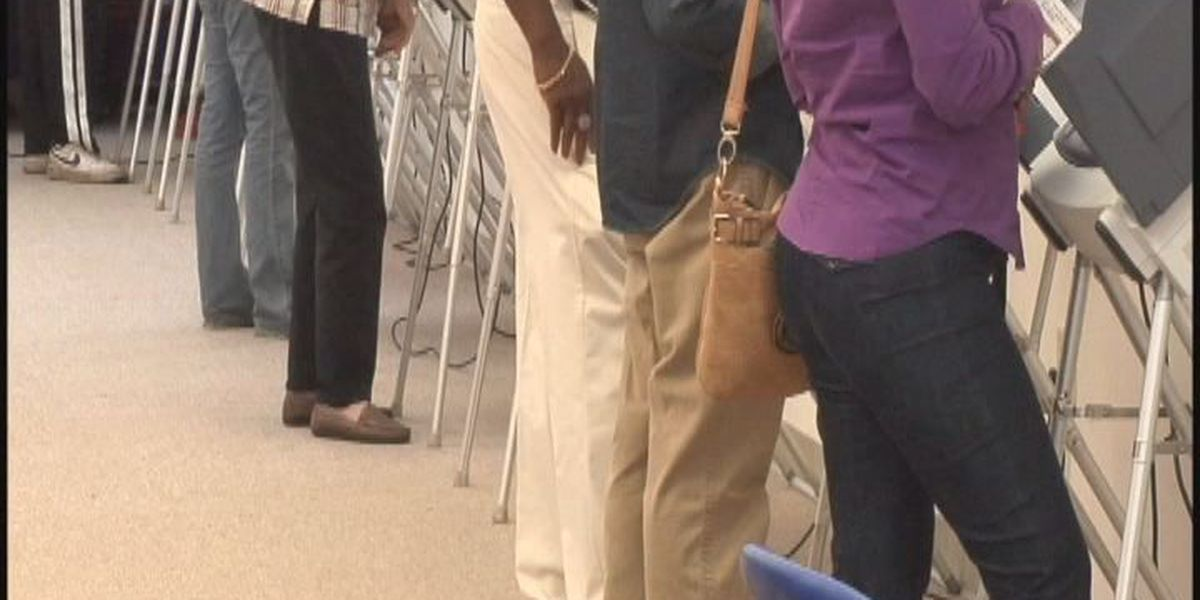 Lowndes Co. needs poll workers for upcoming election