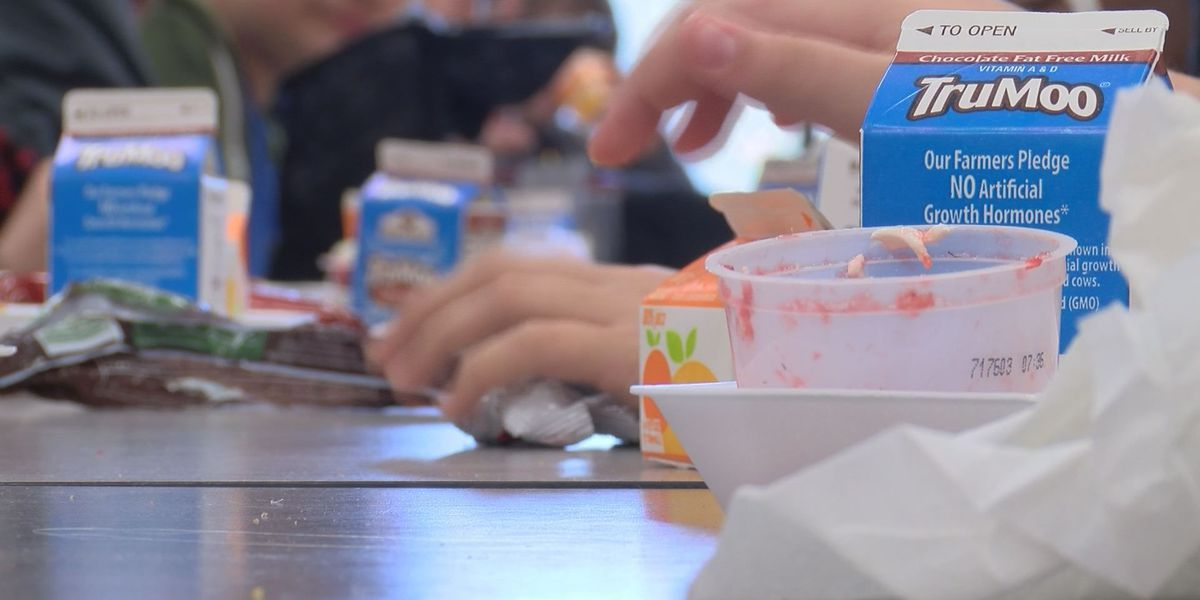 Turner Co. School Nutrition Dept. to offer Seamless Summer Feeding Program