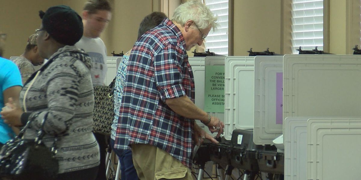 Lowndes Co. clears up voting confusion