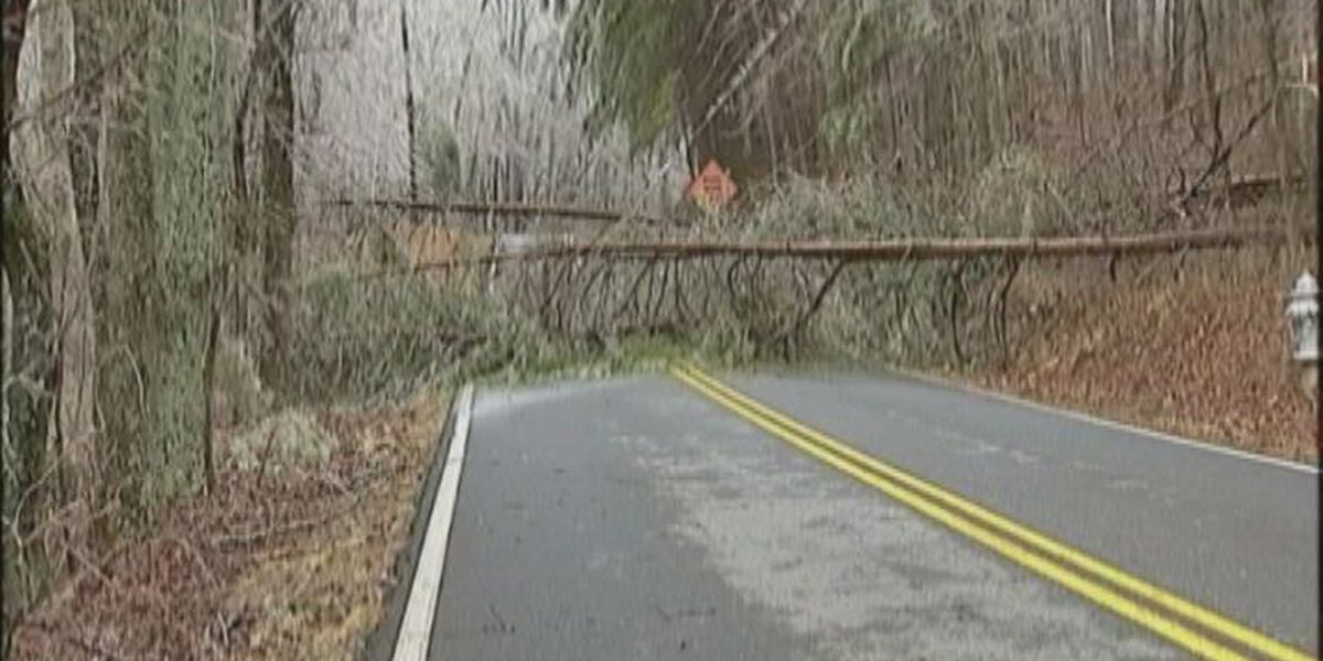 South GA forestry employees helping out North GA