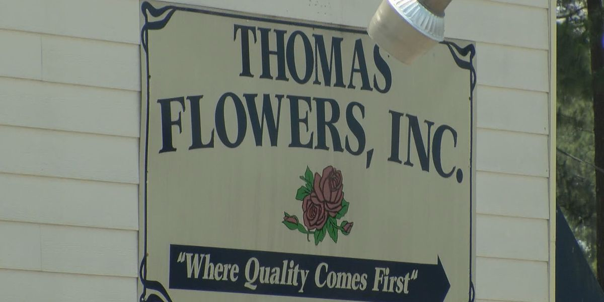 Owner not scared after Douglas businesses targeted for theft
