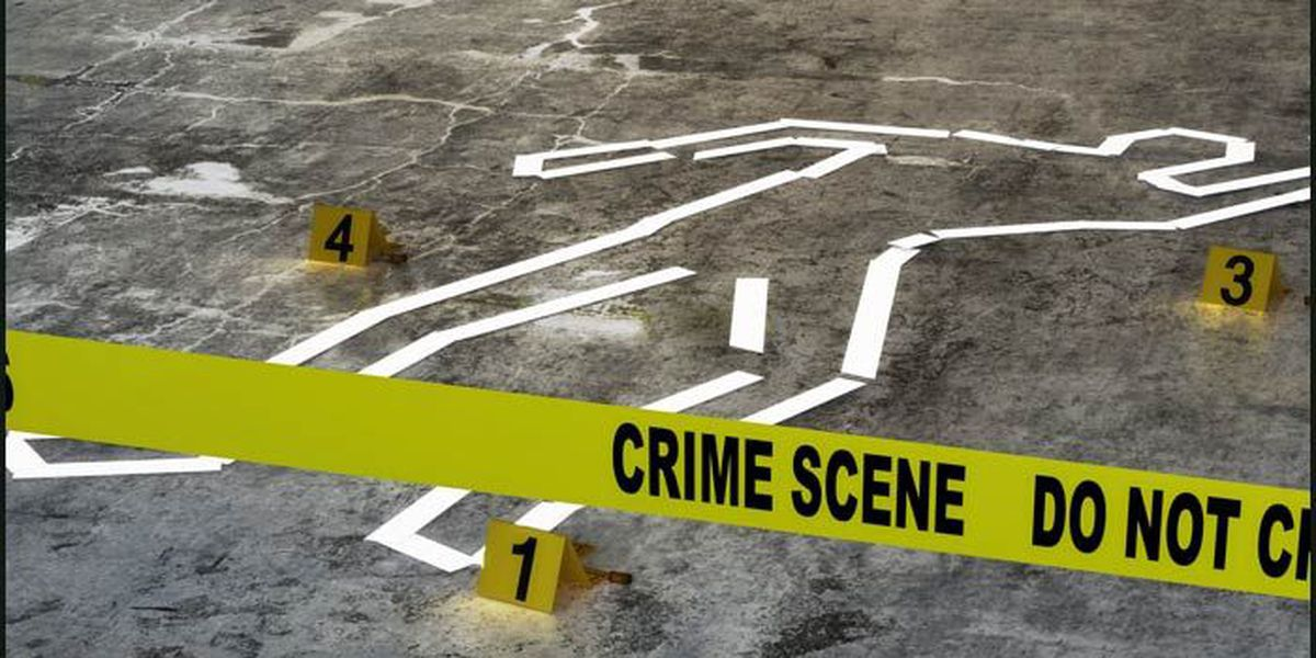 Interactive: Tracking 2019 homicide cases in Dougherty Co.