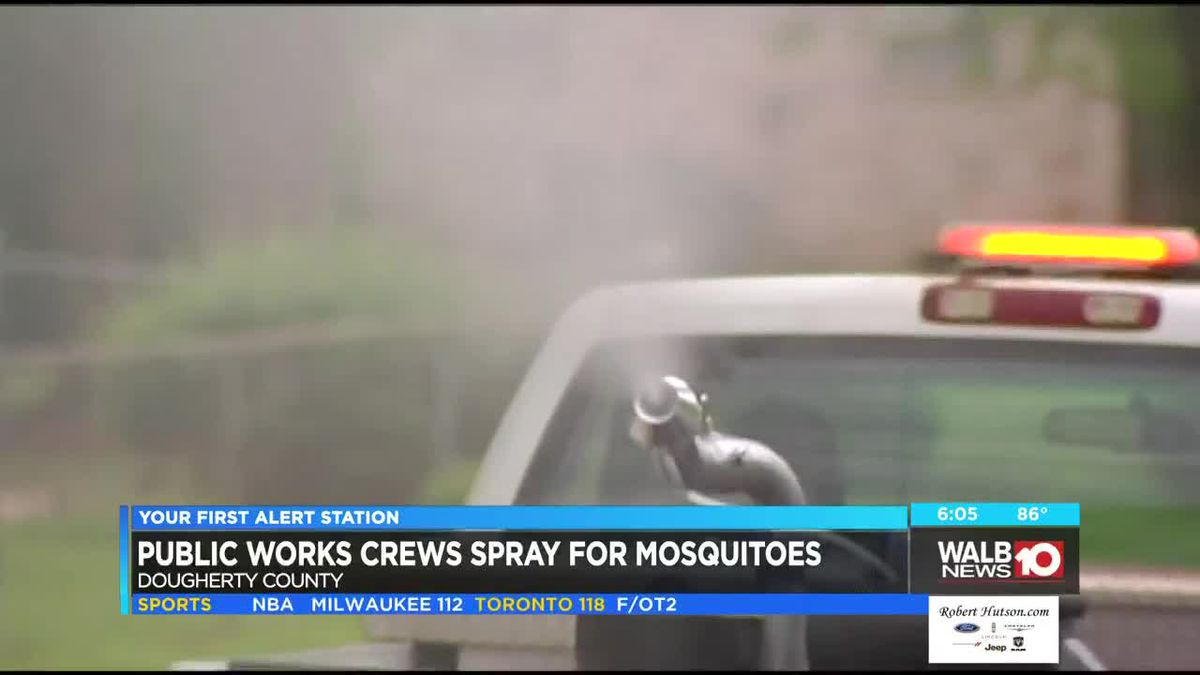 Waging war on mosquitoes