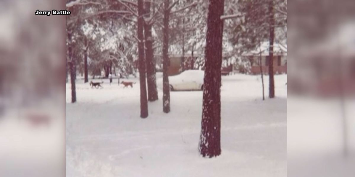 Record snow storm hit Albany 43 years ago