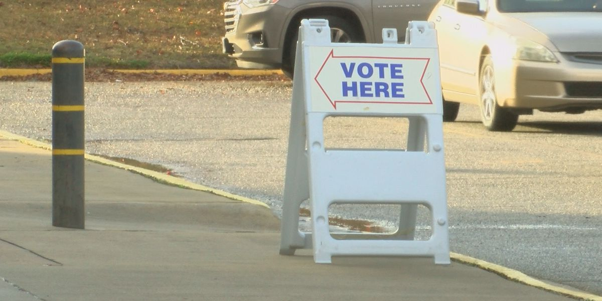Early voting ends on high note in Dougherty, Lee