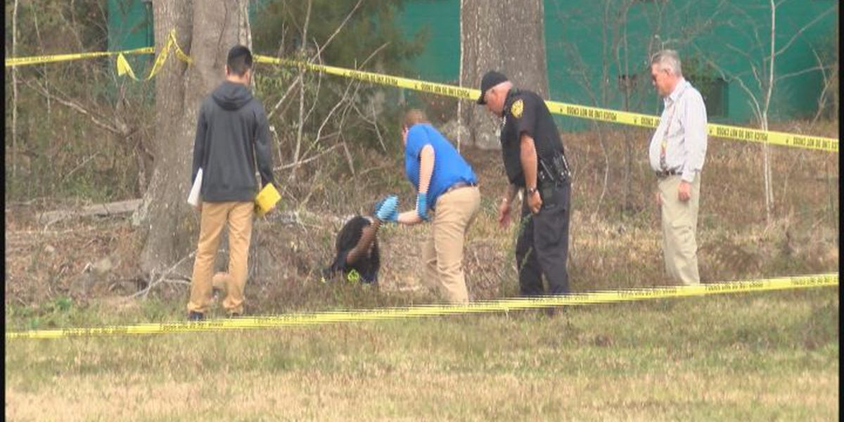 Sylvester Police working to identify body found in ditch