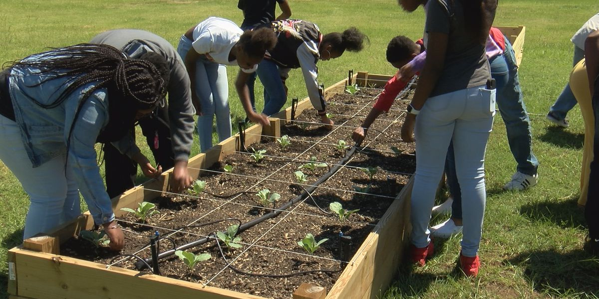 Dougherty Co. students build community garden from the ground up