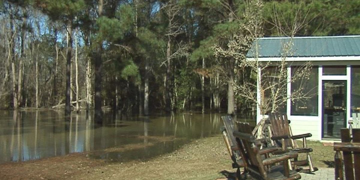 Moultrie is still soggy