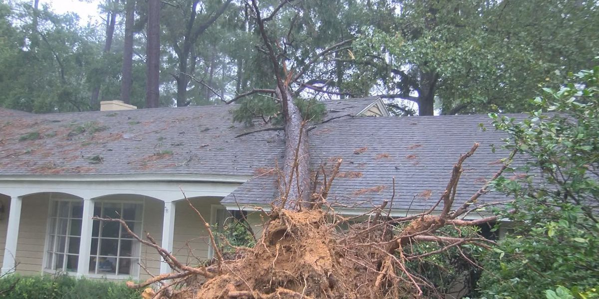Deputy Commissioner: 50K storm claims, number expected to grow