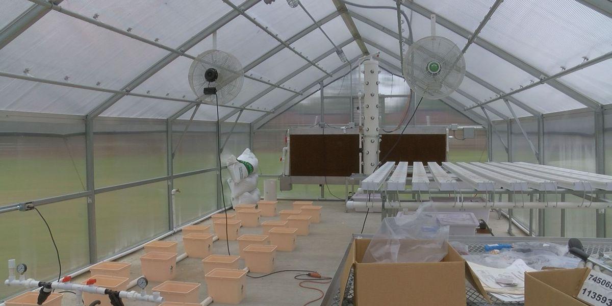 Baker Co. K-12 Schools make progress on greenhouse