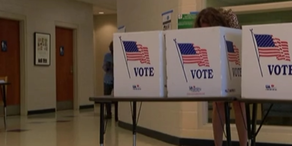 Election hacking puts focus on paperless voting machines