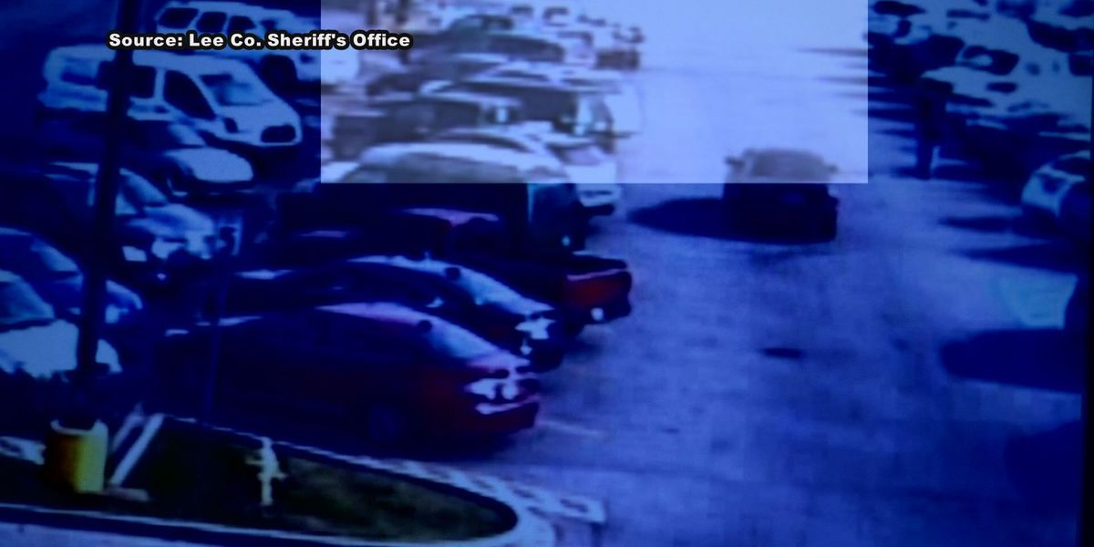 Lee Co. officials search for thieves involved in Walmart car break-in