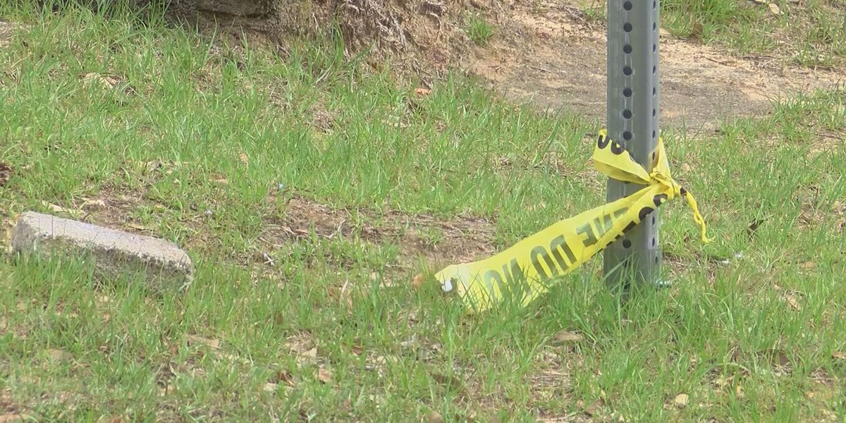 'We really just got to do better': Albany neighbors react to Monday night shooting
