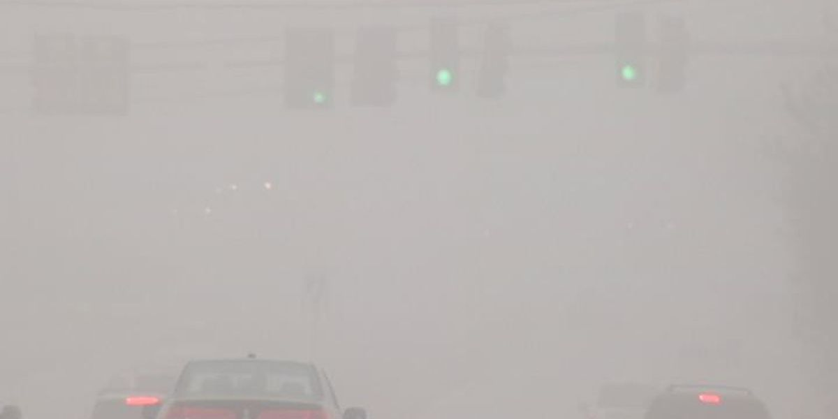 What many drivers forget while traveling in fog