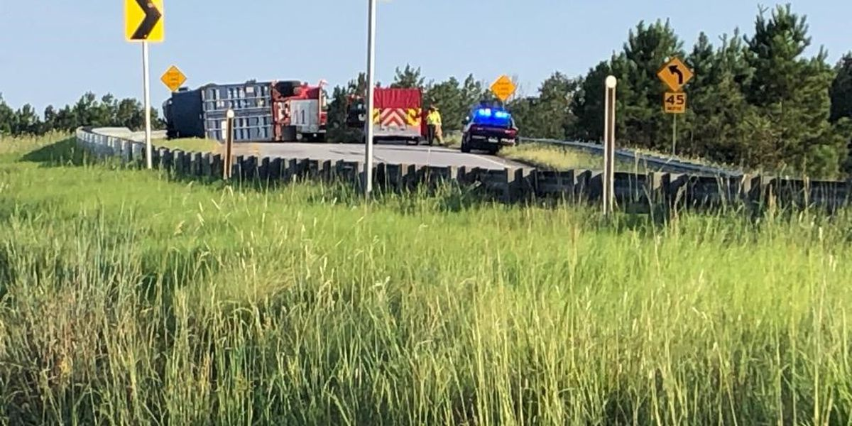 Driver cited after Highway 82 crash in Albany