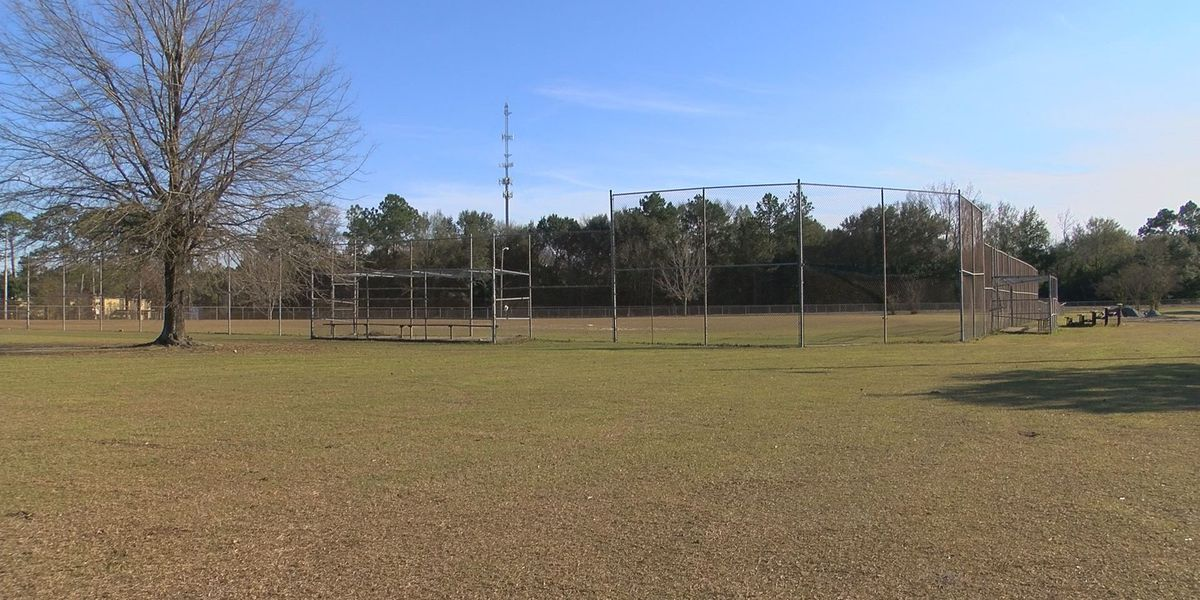 Albany, Dougherty Co. come together for presentation of C.W. Heath Park renovations