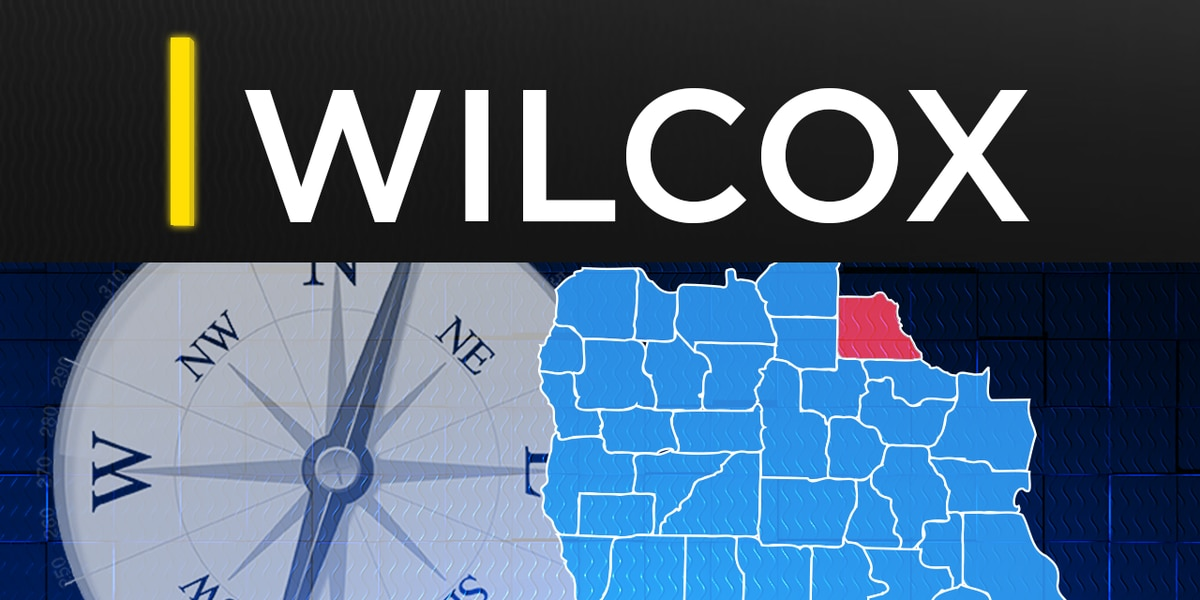 Wilcox Co. student arrested for social media threat