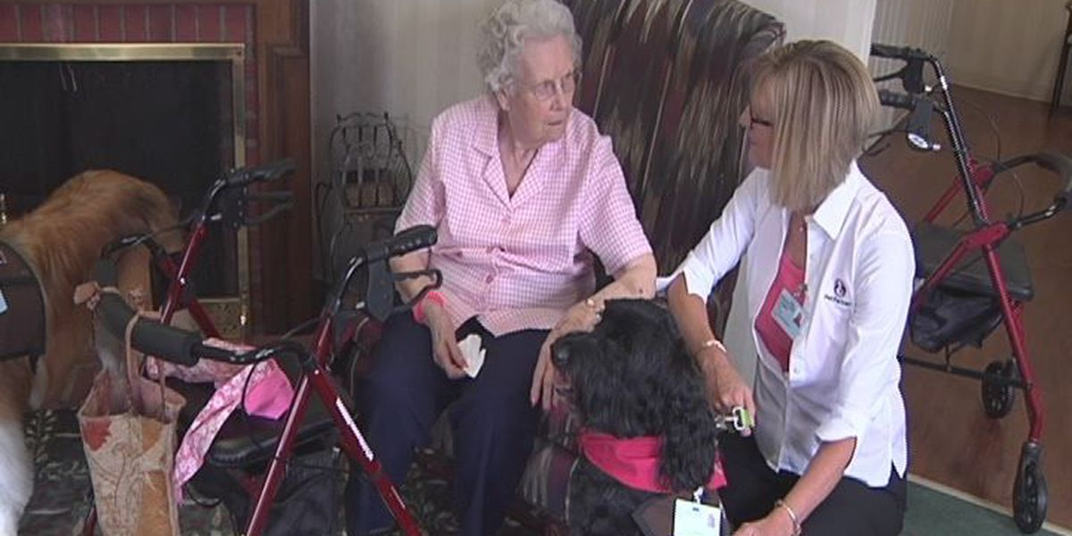 Furry friends visit seniors in Albany