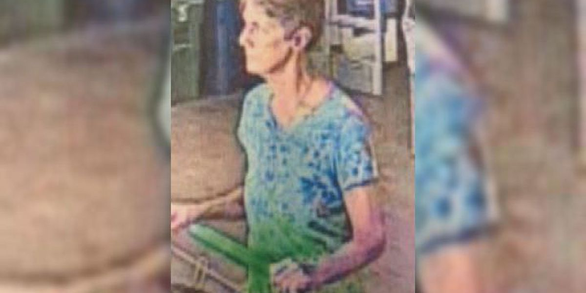 VPD searching for purse theft suspect
