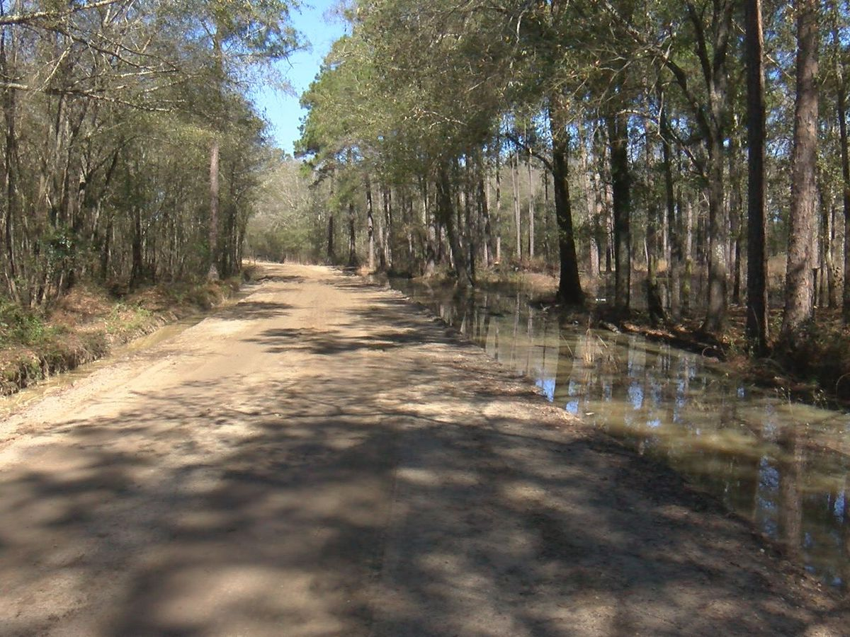 Mitchell Co. plans to address dirt road issues