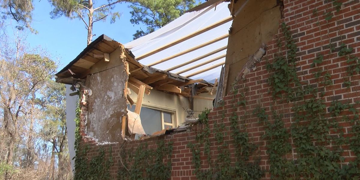 Albany neighborhoods clean up after storm
