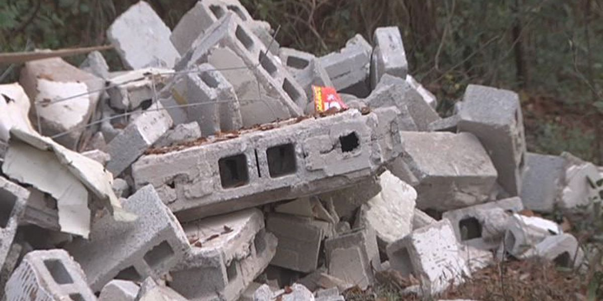 Dougherty Co. officials name company behind illegal dump