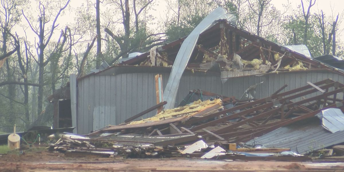 """Stewart County poultry operation """"wiped out"""" by storms"""