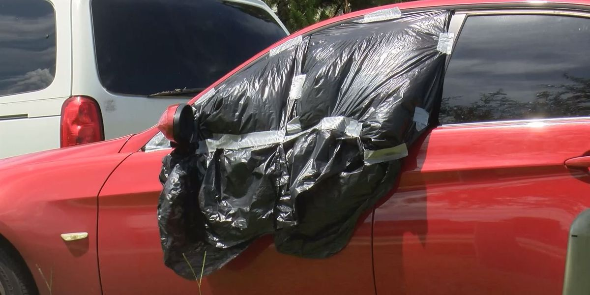 Multiple cars broken into in one Albany neighborhood