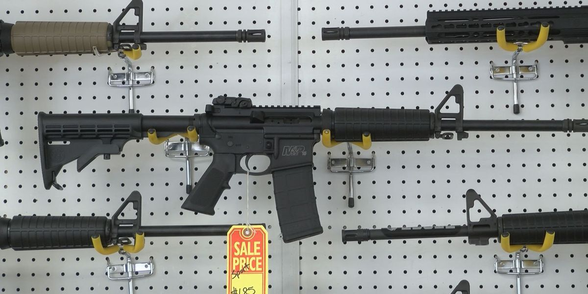 Gun sales on the rise in South Georgia