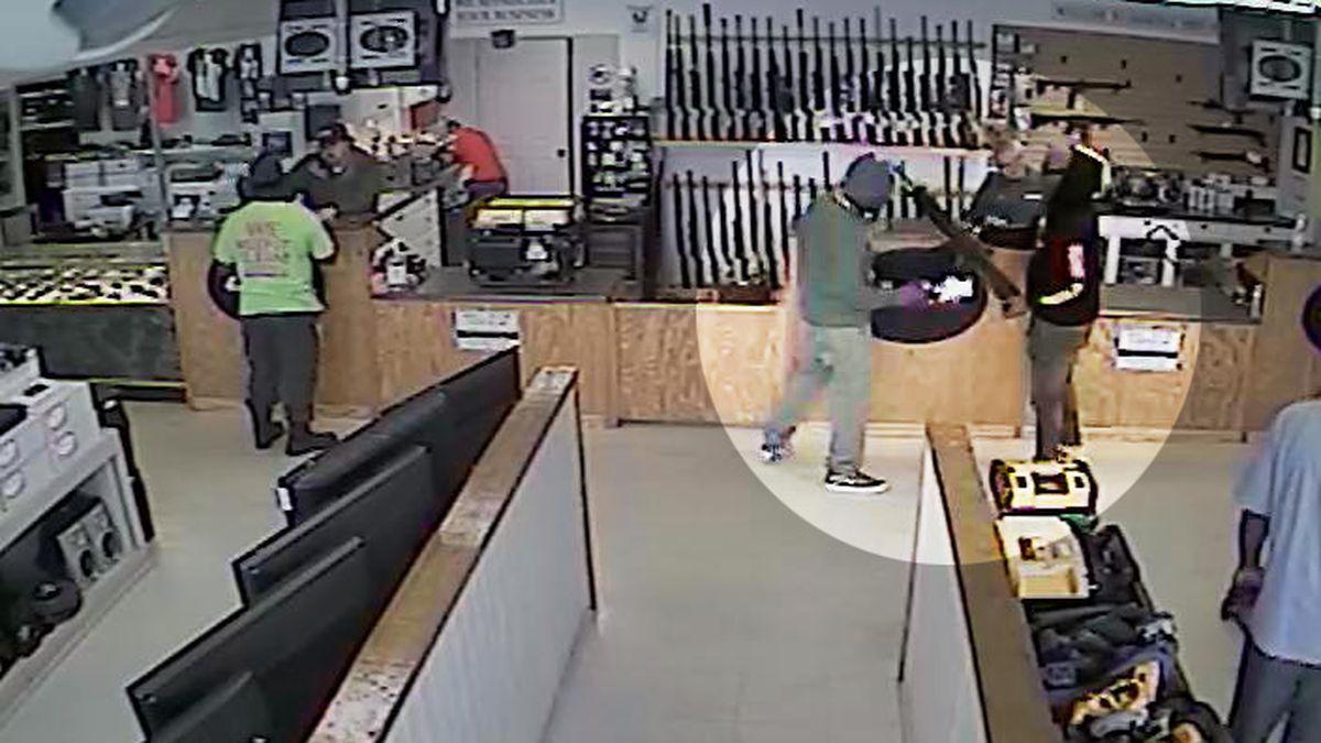 Suspected Albany gun thief caught