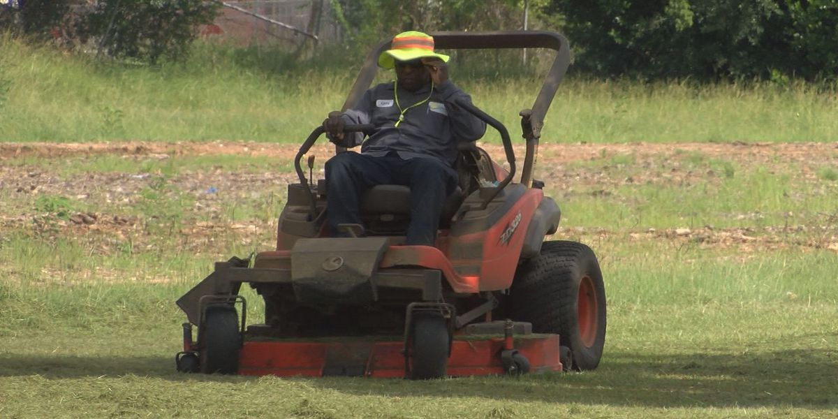 Rainy weather keeps lawn care businesses busy