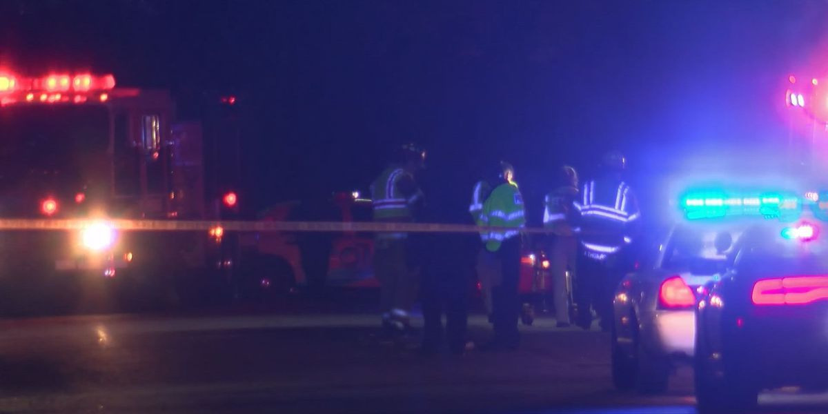 Victim identified after fatal hit and run in Albany