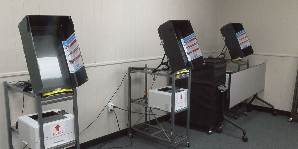 Elections official: Lee Co. Election Day server issue had no impact on votes