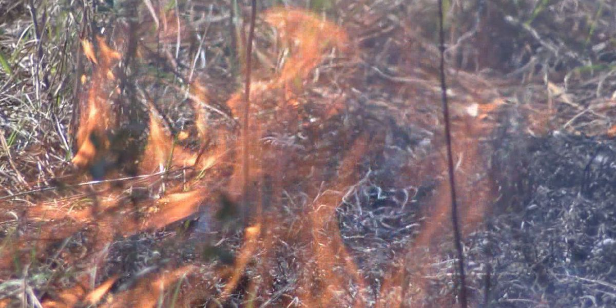 Lowndes County puts a hold on burning permits