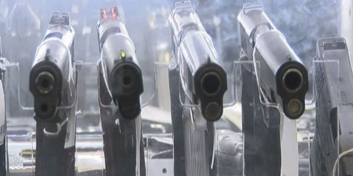Guns, carry permits hot commodities for So. Georgians